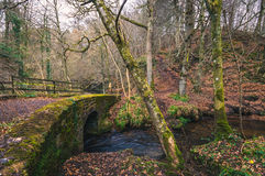 Mossy stone bridge Royalty Free Stock Photos
