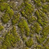 Mossy Stone. Seamless Tileable Texture. Royalty Free Stock Photo