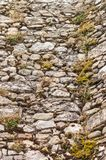 Mossy Stone Wall. An old, rough stone wall covered in moss and vegetation Stock Photography