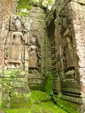 Mossy stones angkor wat temple ruins Cambodia Royalty Free Stock Images