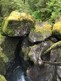 Mossy stones. Closeup of a cluster of mossy stones in a forest area Stock Photography