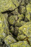 Mossy stones. Mound of old mossy stones in a mountain Royalty Free Stock Images