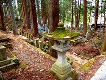 Mossy Takayama Lantern Royalty Free Stock Image