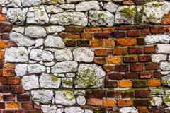 mossy vägg för tegelsten Arkivfoto