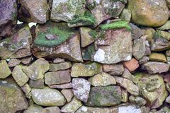 Mossy wall. Background At Scotland royalty free stock photos