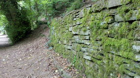 Mossy wall. Path by Mossy wall stock image