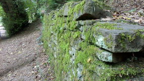 Mossy wall. By a path Royalty Free Stock Image