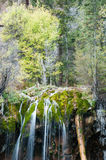Mossy water fall Stock Image