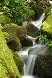 Mossy waterfall. A waterfall with mossy rocks Royalty Free Stock Photography