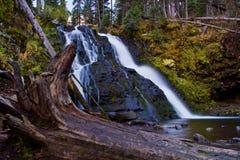 Mossy Waterfall Stock Photos