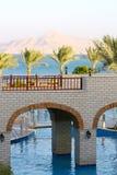 mostów góry p palmowi czerwonego morza drzewa Zdjęcie Stock
