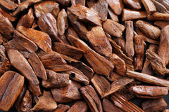 In most Arab countries bukhoor is the name given to scented bricks or wood chips Stock Image