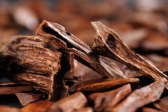 In most Arab countries bukhoor is the name given to scented bricks or wood chips. These scented chips or bricks are burned in incense burners to perfume the Stock Image