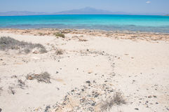Most beautiful background of the sandy beach and turquoise bay at Crisi island, Crete Royalty Free Stock Photos