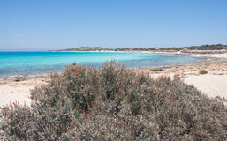 Most beautiful beach at Crisi Island, Crete Royalty Free Stock Image