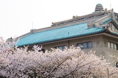 The most beautiful university---wuhan university. Taken at the old building of wuhan university stock photography