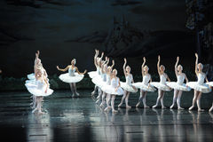 The most beautiful white swan-ballet Swan Lake Royalty Free Stock Photo