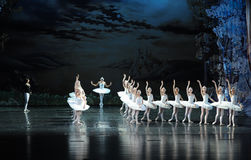 The most beautiful white swan-ballet Swan Lake Stock Image