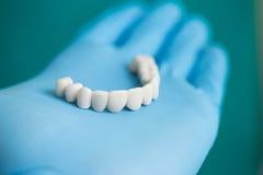 most dentystycznego zdjęcia royalty free