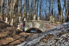 Most dla chodzić w parku Obraz Stock