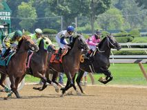 Racing from Saratoga 2018 stock photography