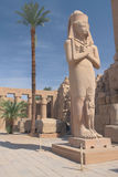 The most famous statue in Karnak Temple. Rameses II Statue at Karnak Temple ( Luxor, Egypt stock photography