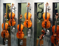 The most famous violins Stock Photography