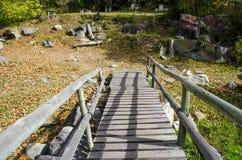 Most i jesień kolorowy las Obrazy Stock