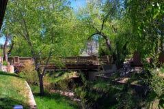 Most i lata ulistnienie Fotografia Stock