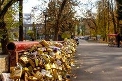 Most miłość z milionami kędziorki zdjęcia royalty free