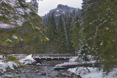 Most na halnym strumieniu w zima czasie obraz royalty free