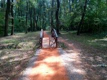 Most na Jogging śladzie w lesie Zdjęcie Royalty Free