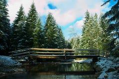Most na rzece z śniegiem Obrazy Royalty Free