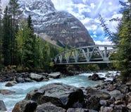 Most nad kopanie Końską rzeką w Kanadyjskich Skalistych górach obrazy stock