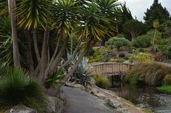 Most nad małą rzeką otaczającą botaniczną naturą obraz stock