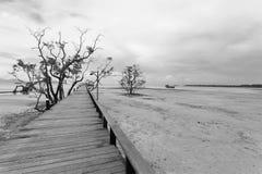 Most nad morzem podczas odpływu przypływu w czarny i biały Zdjęcie Stock