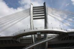 Most nad Neva rzek? w Petersburg obraz royalty free