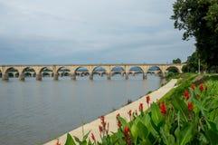 Most nad rzeką z kwiatami w przedpolu obrazy royalty free
