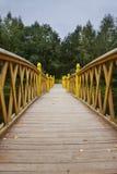 most nad wodnym drewnem Obrazy Stock