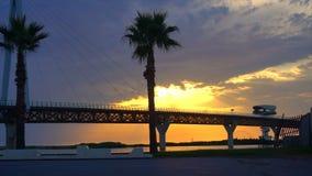 Most przeciw pięknemu zmierzchu niebu z drzewka palmowego use dla naturalnego tła, tła i wielocelowej dennej sceny, zbiory wideo