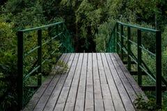 Most przez rzekę w lasowej Jesiennej scenerii w p zdjęcia stock