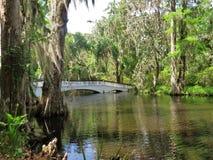 Most przy Magnoliową plantacją w Charleston, SC Zdjęcia Stock