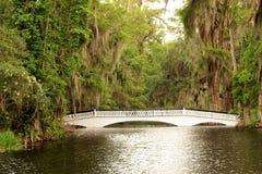 Most przy Magnoliową plantacją w Charleston, SC Fotografia Royalty Free