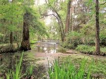 Most przy Magnoliową plantacją w Charleston, SC Zdjęcie Stock