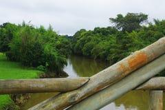 Most rzeką zdjęcie royalty free