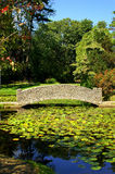 most rzemieślnik stawu lily kamienia styl Obrazy Royalty Free