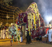 The most sacred elephant at the Kataragama Festival in Sri Lanka parades through the arena. Royalty Free Stock Images