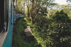 The most scenic train ride in the World. Railway from Ella to Kandy in Sri Lanka royalty free stock photos