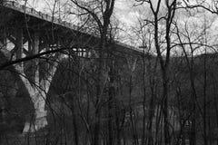 Most strzelający przez drzew w czarny i biały Obraz Stock