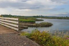 Most, trawa i jezioro, Obrazy Royalty Free
